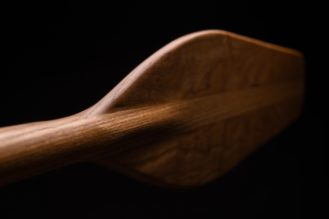 paddle perspective 1 a